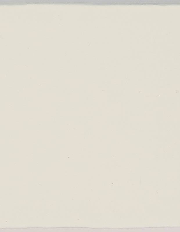 Carrelage monochrome - ZI0802002