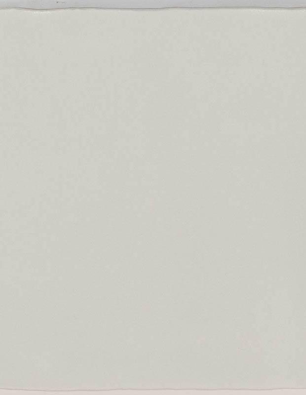 Carrelage monochrome - ZI0802006